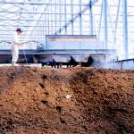 有機センターで野菜残渣と堆肥を混ぜる